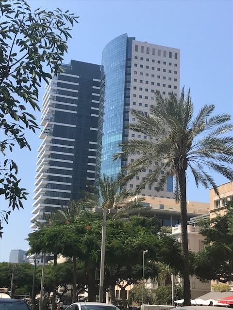 Hochhäuser und Palmen in Tel Aviv