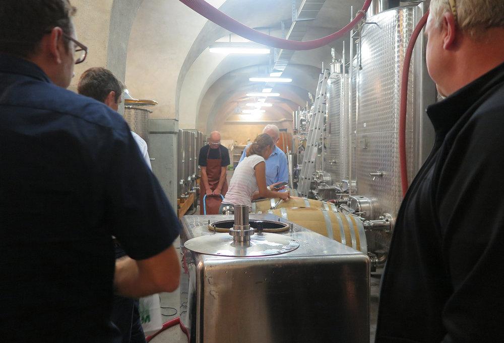 Die Winzerin füllt die Weinfässer auf