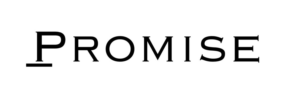 Promise Logo 17