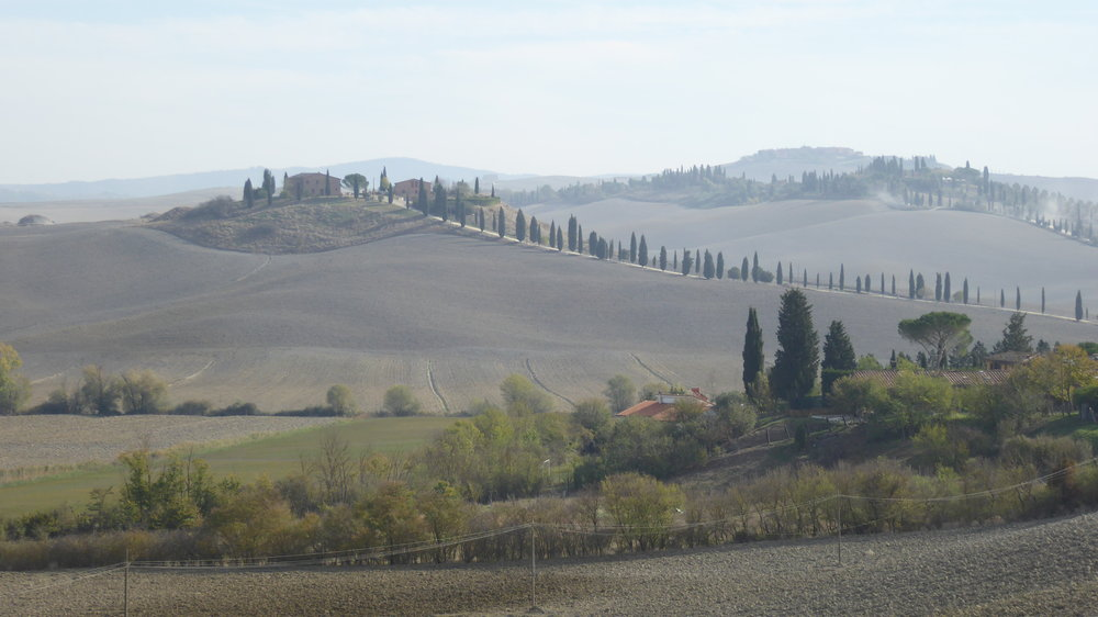 Panoramic view : driving from Siena to Asciano