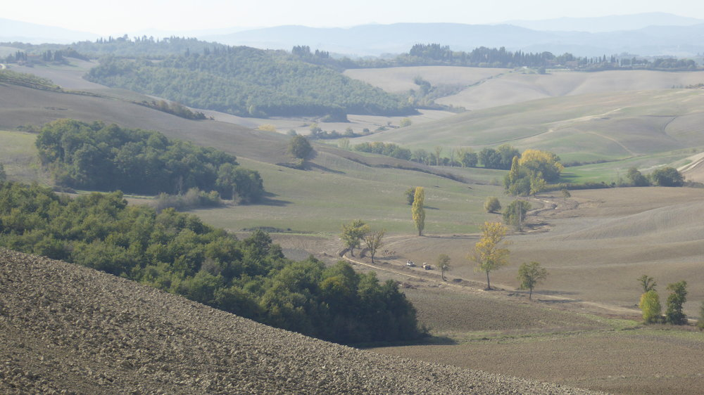 Panoramic view: driving from Siena to Asciano 2