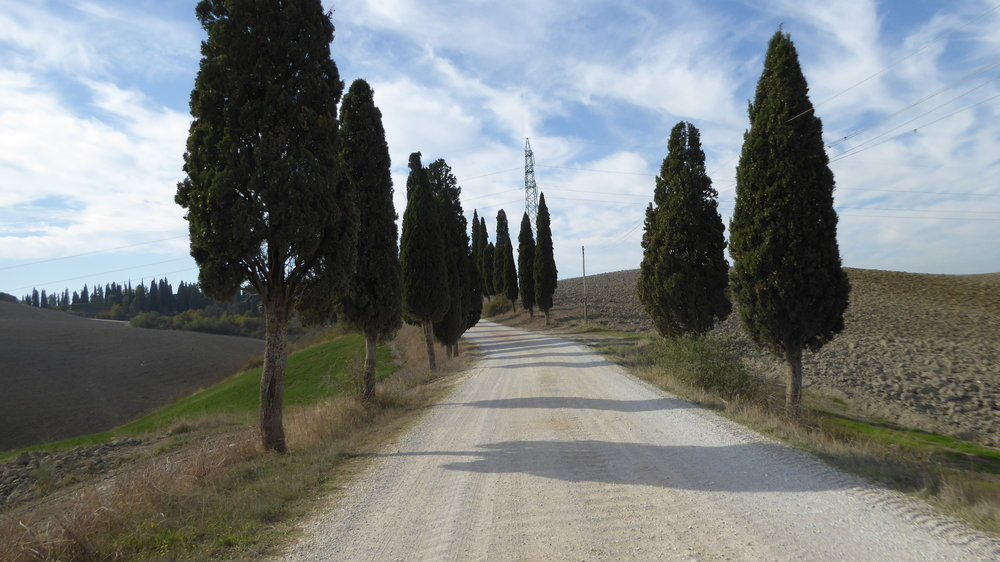 Beautiful street on the way to Pienza