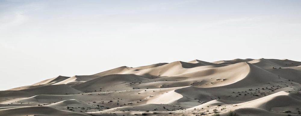 Desert-2430.jpg
