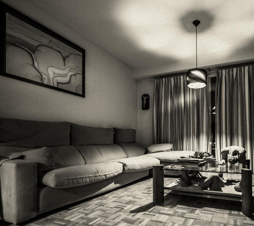 Living room-6119 peinture huile.jpg