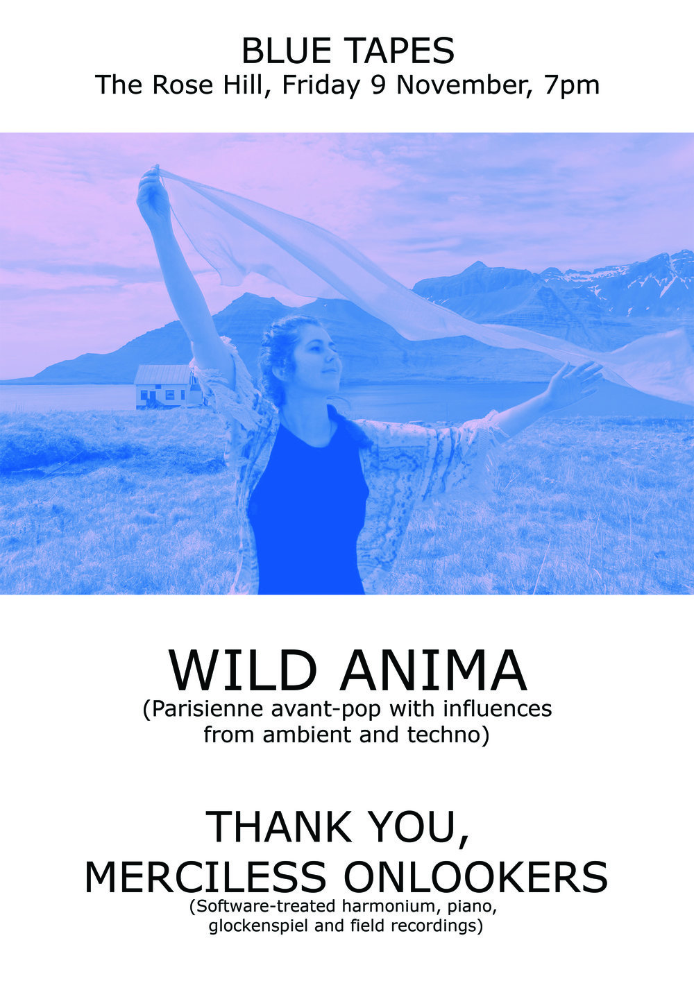 wild anima rose hill a3 - Blue Tapes.jpg