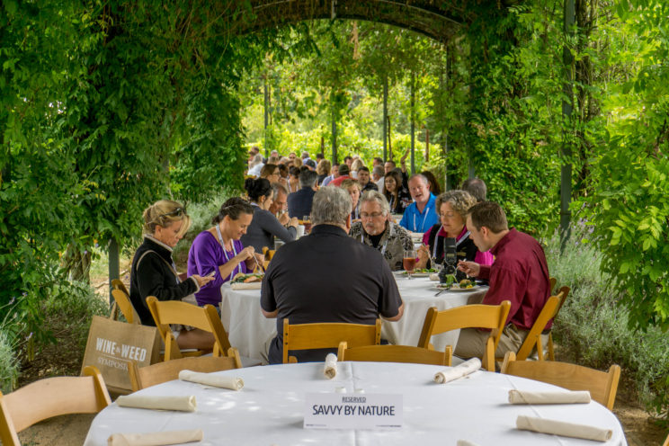 photo courtesy of the Wine & Weed Symposium