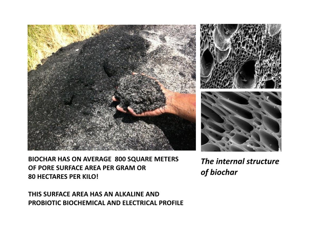 Biochar Presentation to DENR Workshop Lopez Center Sept 2016.005.jpeg