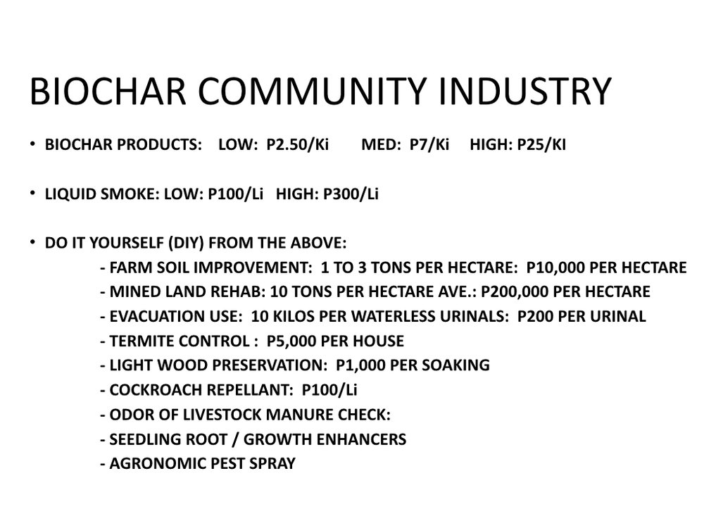 Biochar Presentation to DENR Workshop Lopez Center Sept 2016.009.jpeg