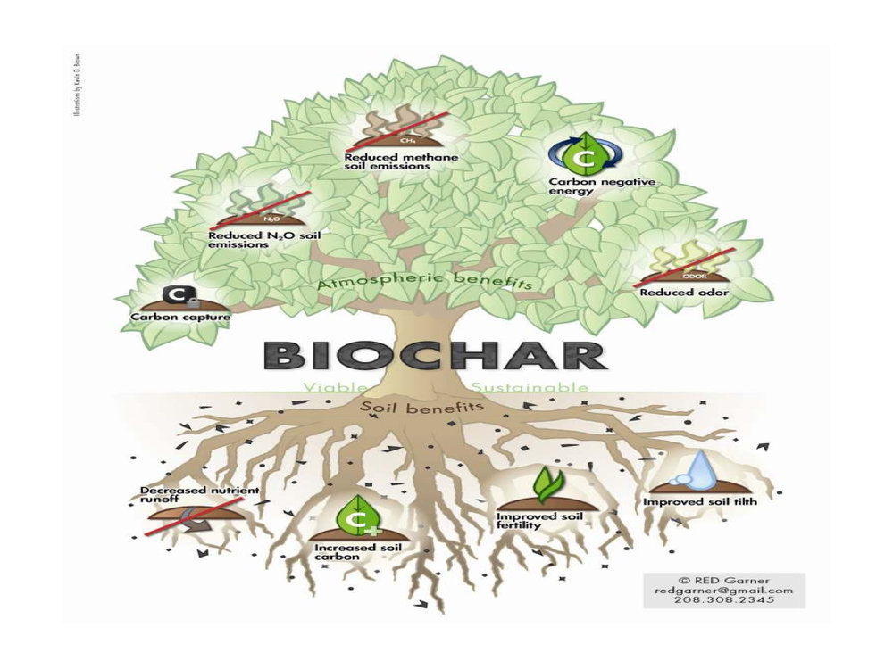 Biochar Presentation to DENR Workshop Lopez Center Sept 2016.010.jpeg