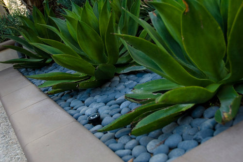 4 Eco-friendly Newport Coast Landscape Construction Ideas