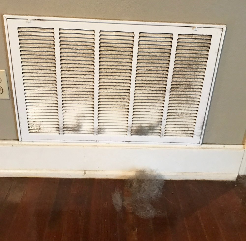 No, that isn't Rover sitting just behind that vent, but it is his winter coat. Two months is the maximum time cap for a filter change, dog people and cat people -- we know you're out there.
