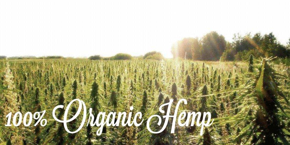 1 Organic Hemp.JPG