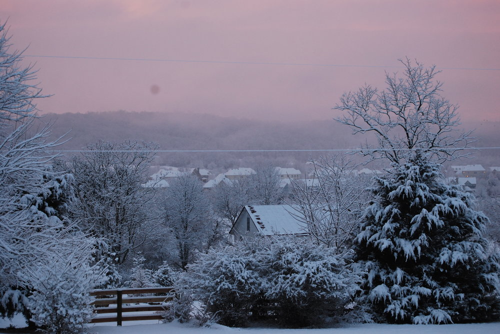 Hopkins Grove with snow and red sunset.JPG