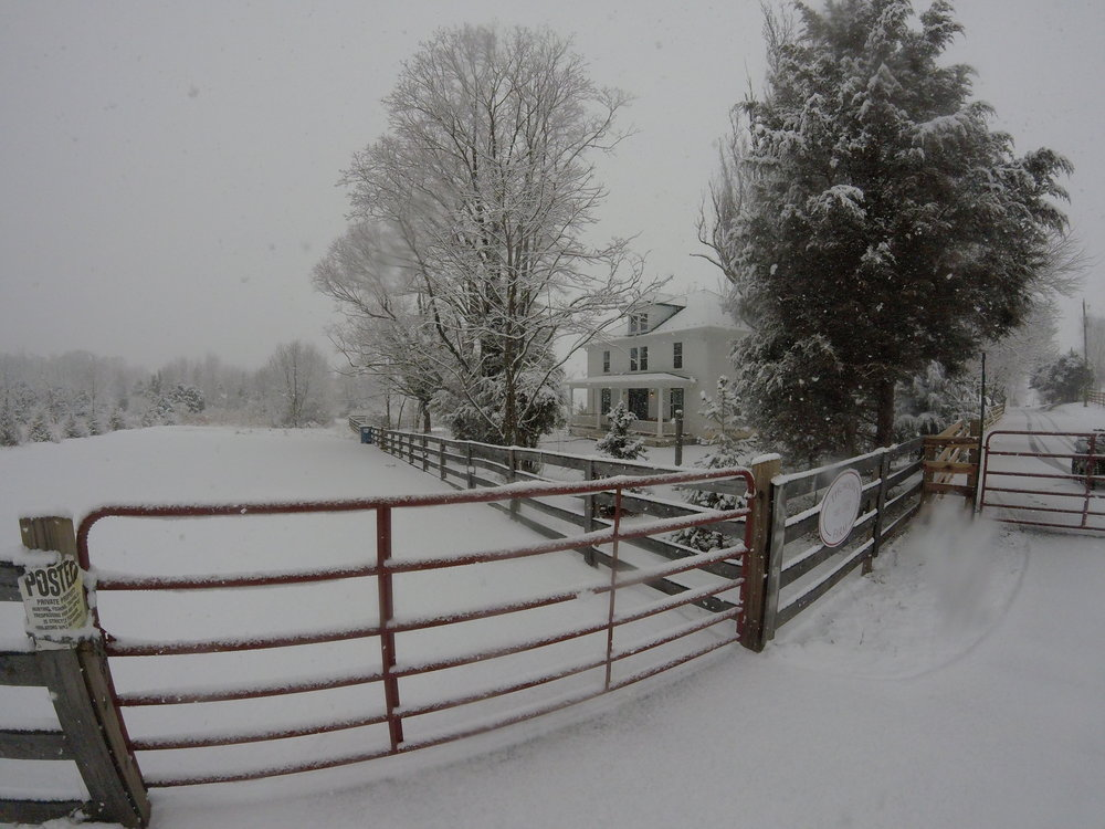 Thomson farm with gate and fence and snow.JPG