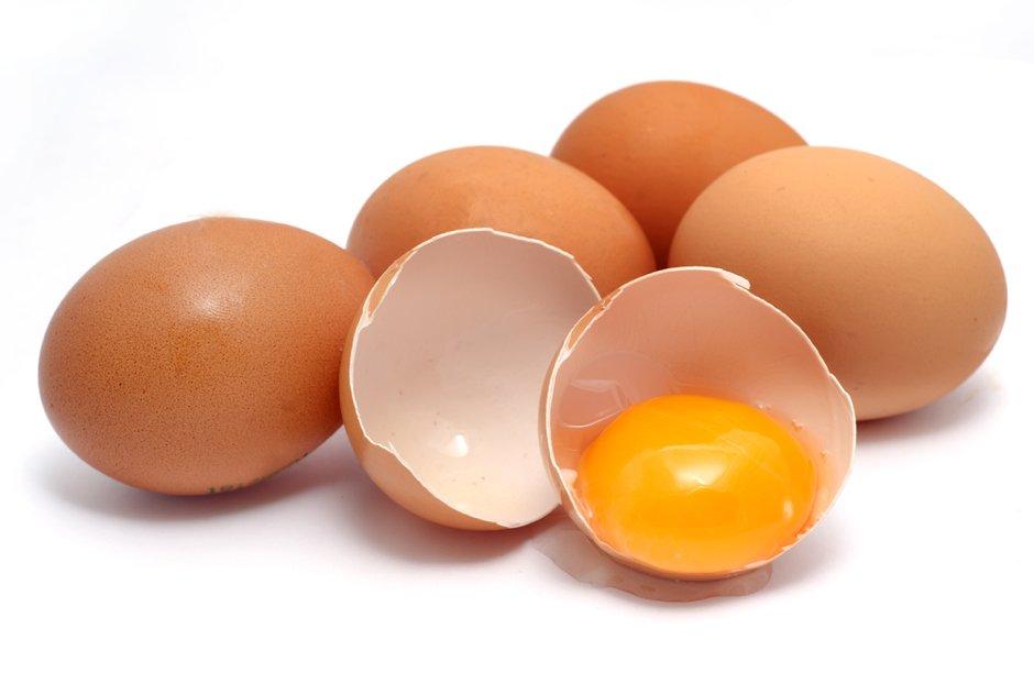 egg allergen 101
