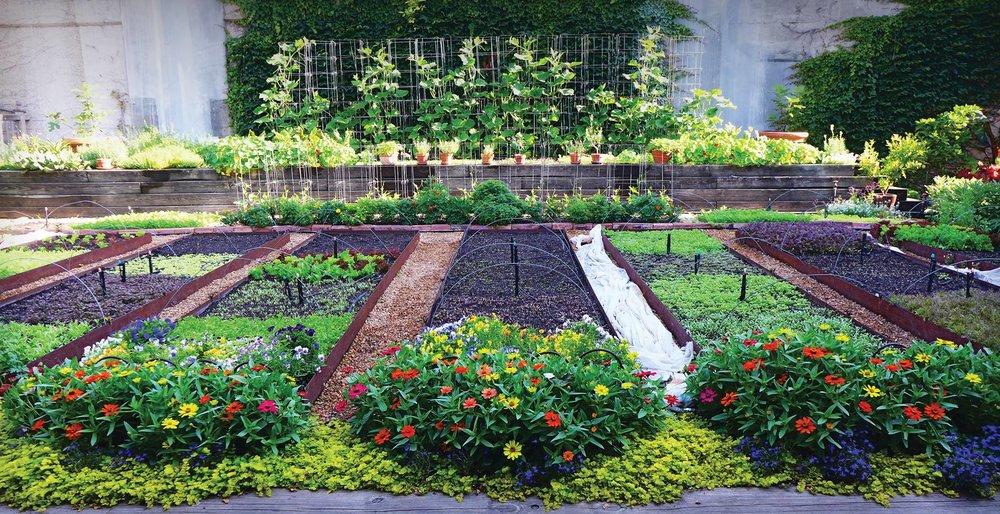 Rick Bayless' Ethereal Backyard Garden