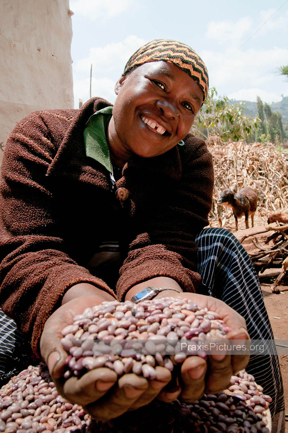 BILIHUSI - Bilihusi is a VICOBA member in Lushoto who has taken out loans to invest in her farm. She raises goats and a cow and sells beans and potatoes in the Lushoto market. She is now able to grow all the food she needs to provide for her family of five.