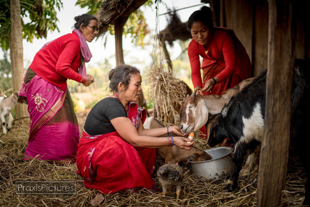 PARTNERSHIP RESILIENCE AND POSITIVE CHANGE IN NEPAL  (Photo Essay)    Nepal 2015. Learn about the work of Women for Peace and Democracy-Nepal, and World Accord, to empower marginalized women and their communities. See how women in rural Nepal have re-built their homes and lives following the devastating 2015 Nepal earthquake, and witness ways Nepali women are transforming their communities through long-term socio-economic development programs...(more)