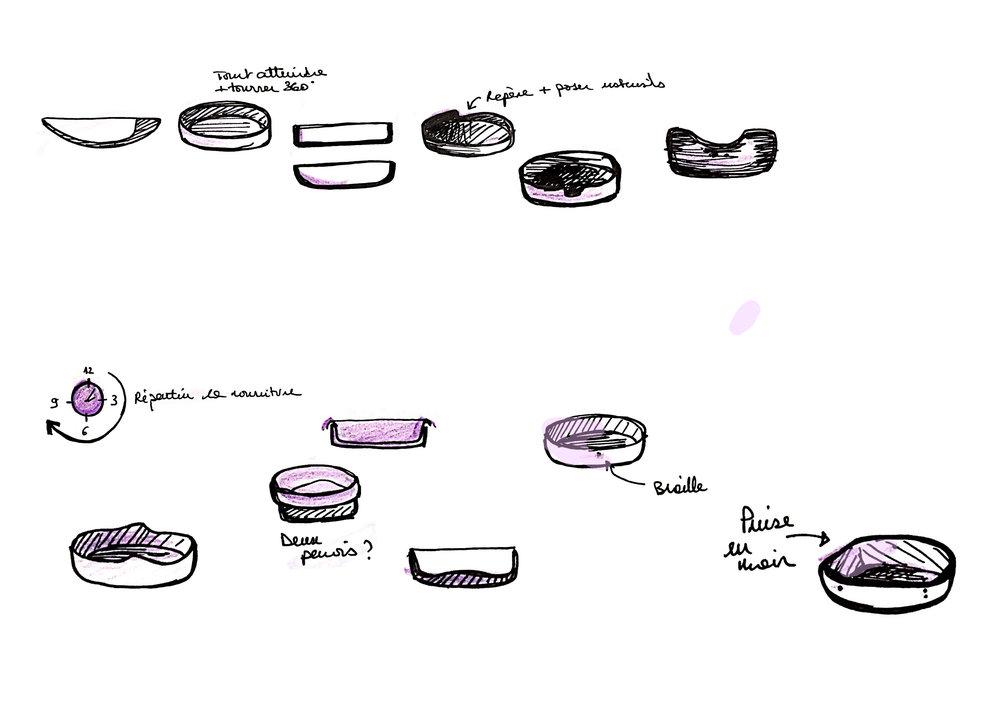 evolution assiette.jpg