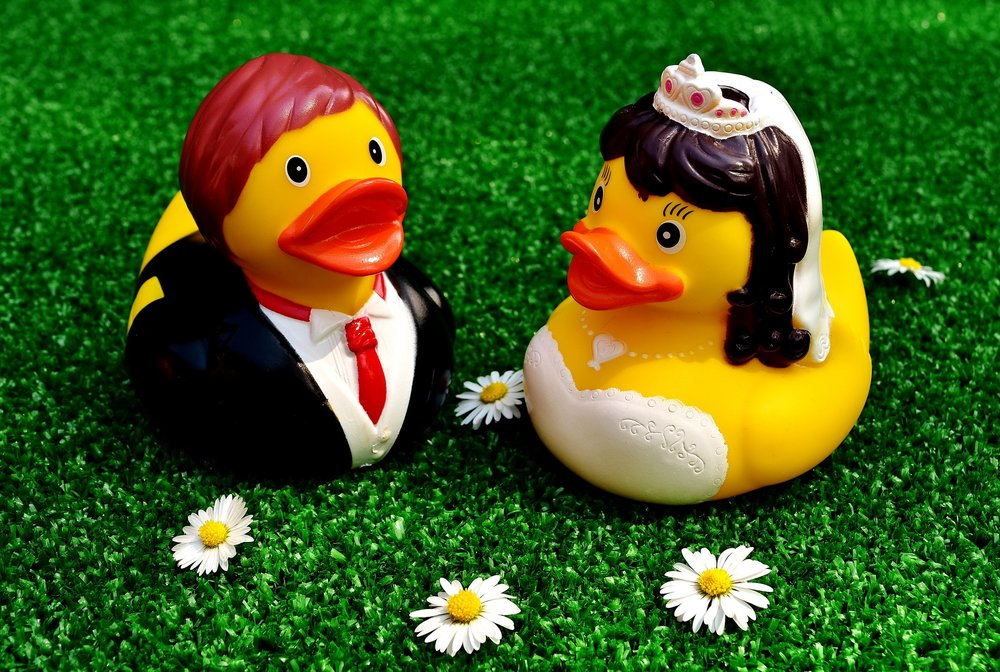 rubber-ducks-2402752_1920.jpg