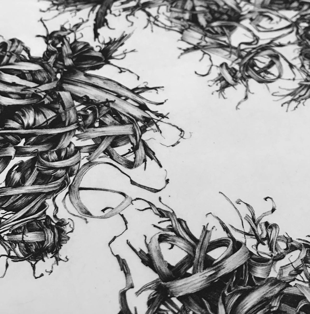 Detail from a photopolymer piece by Sara Schleicher.