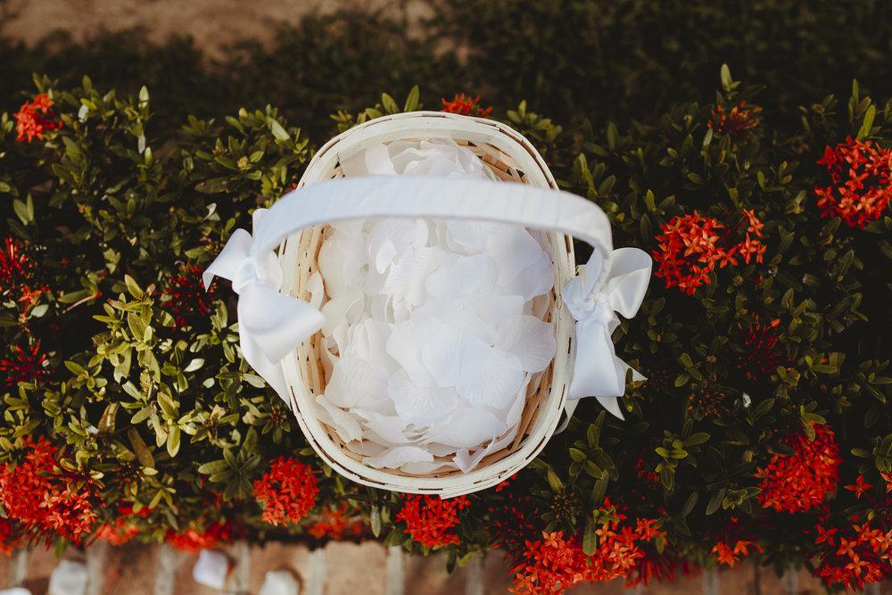 CAROTIDA PHOTOGRAPHER-57.jpg