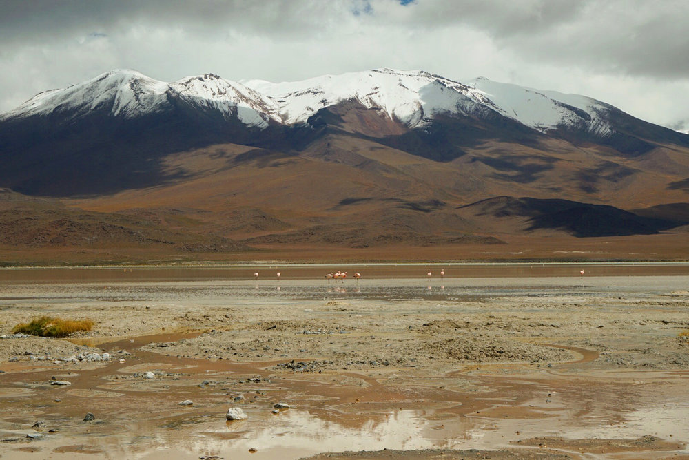 Los Flamencos in Bolivia. 3800 Meters of altitude, an strange but beautoiful landscape.