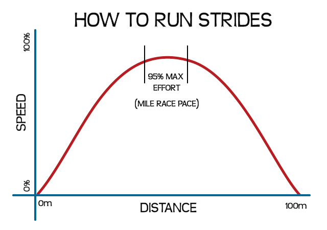 SR-Graph-Strides-2.jpg