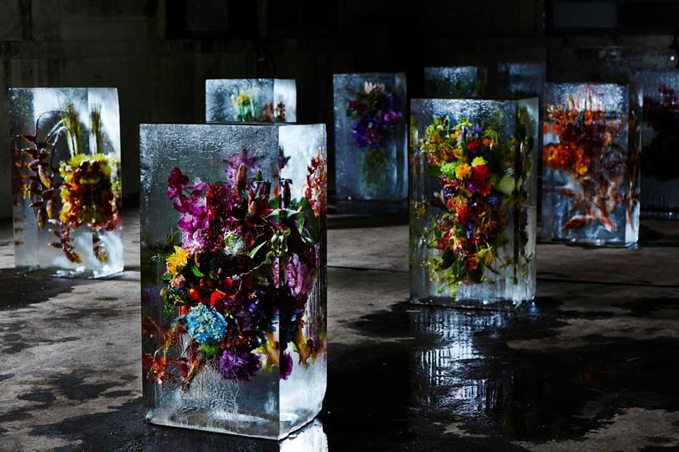 AZUMA MOKOTO -  Iced flowers