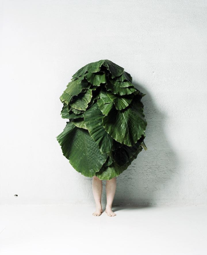 AZUMA MOKOTO -  Leafman