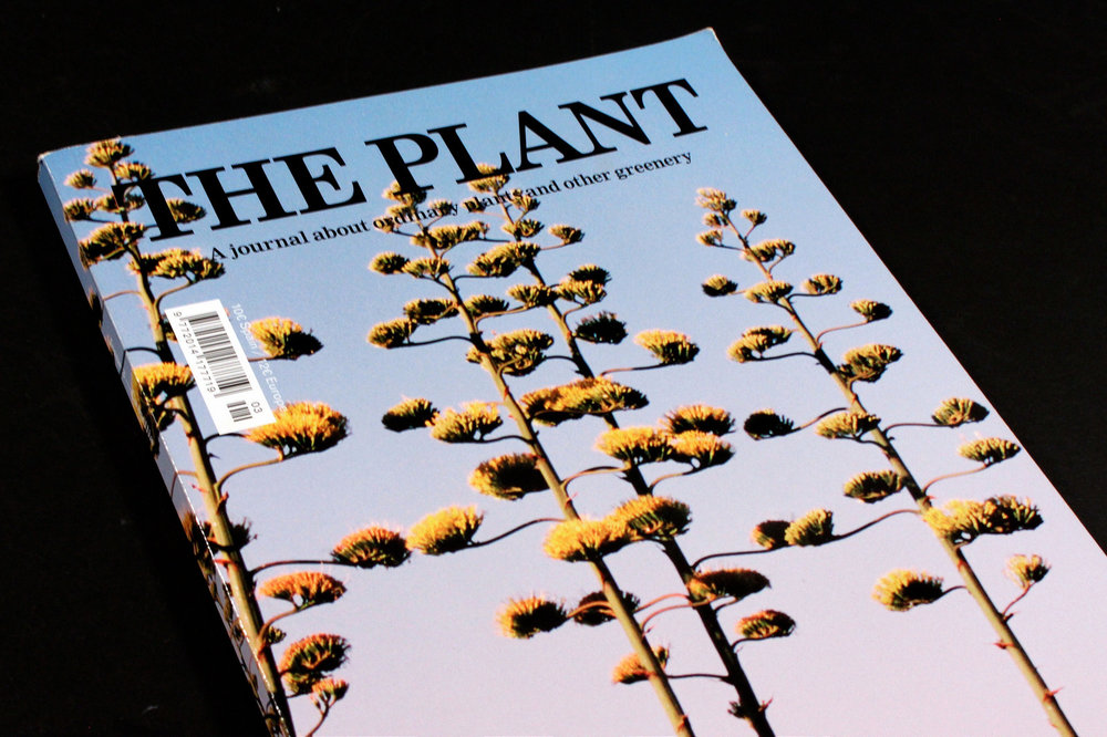 THE PLANT MAG -   Watch