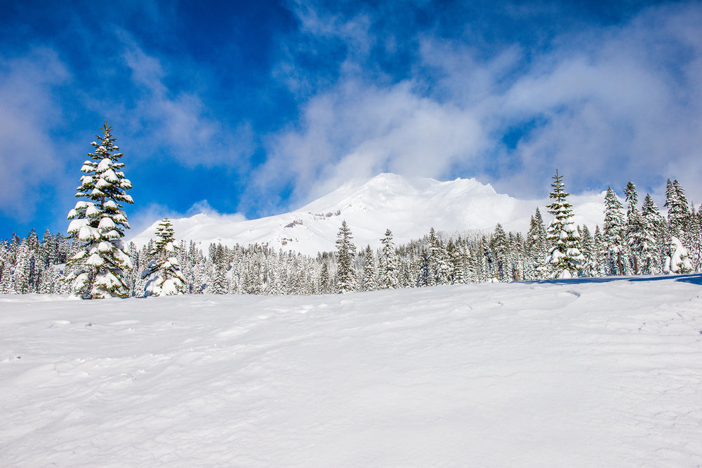 Cross-country ski on Mount Lassen