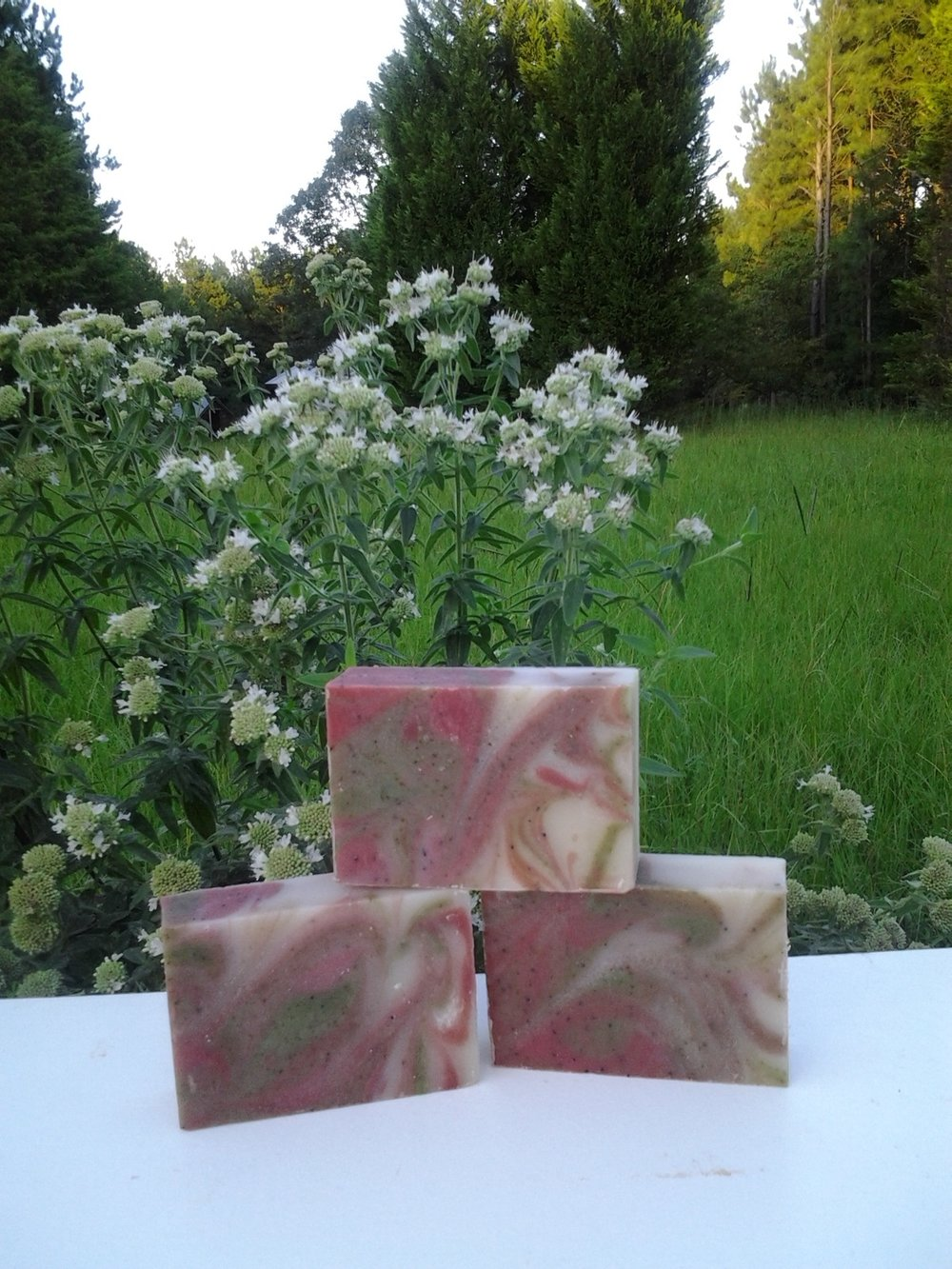 watermelon and mountainmint soap.jpg
