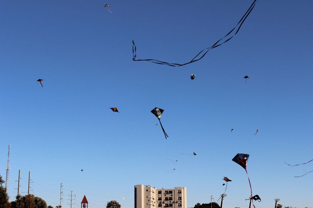KITES IN THE SKY.jpg