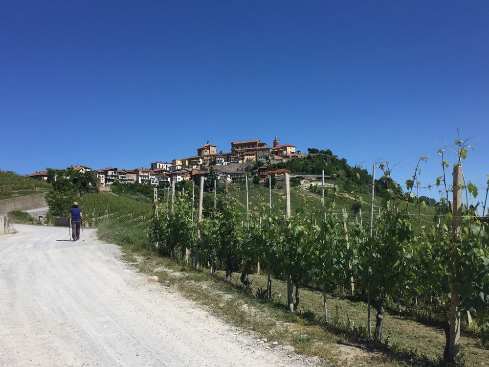 Hiking to La Morra | Small group tour of Piedmont, Italy