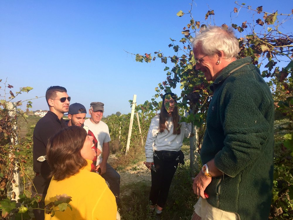 Marcello teaching the WWOOFers how to prune Barbera vines in Piedmont