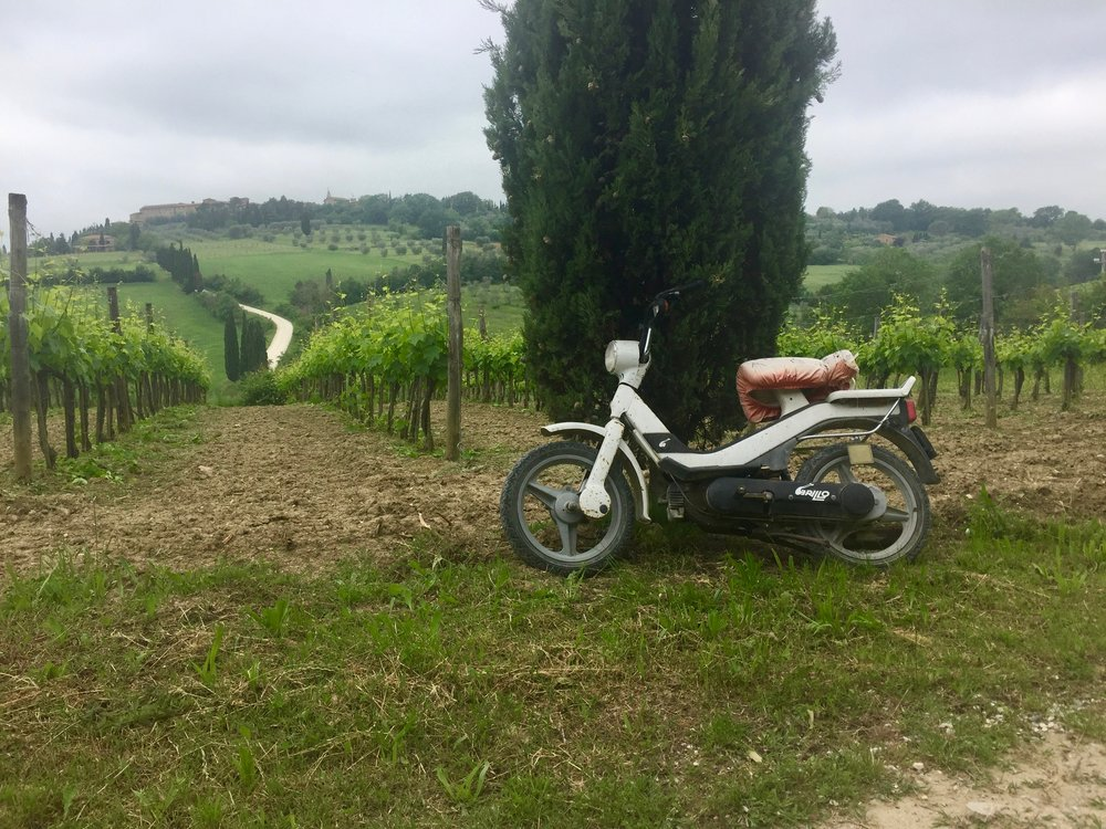 On the hike to Pienza