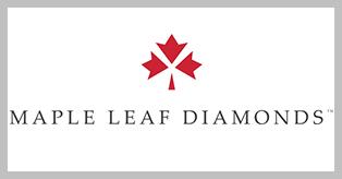 MLD-2015-logo-1819x513.jpg