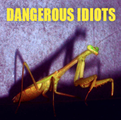 DANGEROUSIDIOTS-2011-cover.png