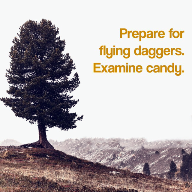 Examine the fucking candy.