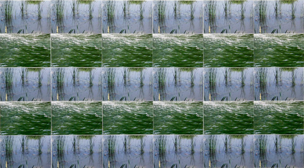 Tara Fracalossi,  Archive (two from water blue/green), 2016