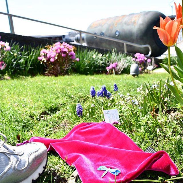 🐝 Bzzzzzzzzzz #PollinateYourPiggies #getoutandexplore #smelltheflowers #wanderlust #accessories #foraging #wherenext #sunshinetherapy #flowerpower🌸 #haveshoeswilltravel #nowgogetit 👣
