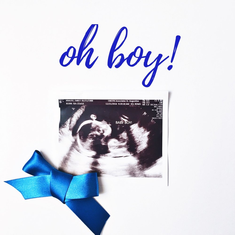 second trimester recap — emily krause