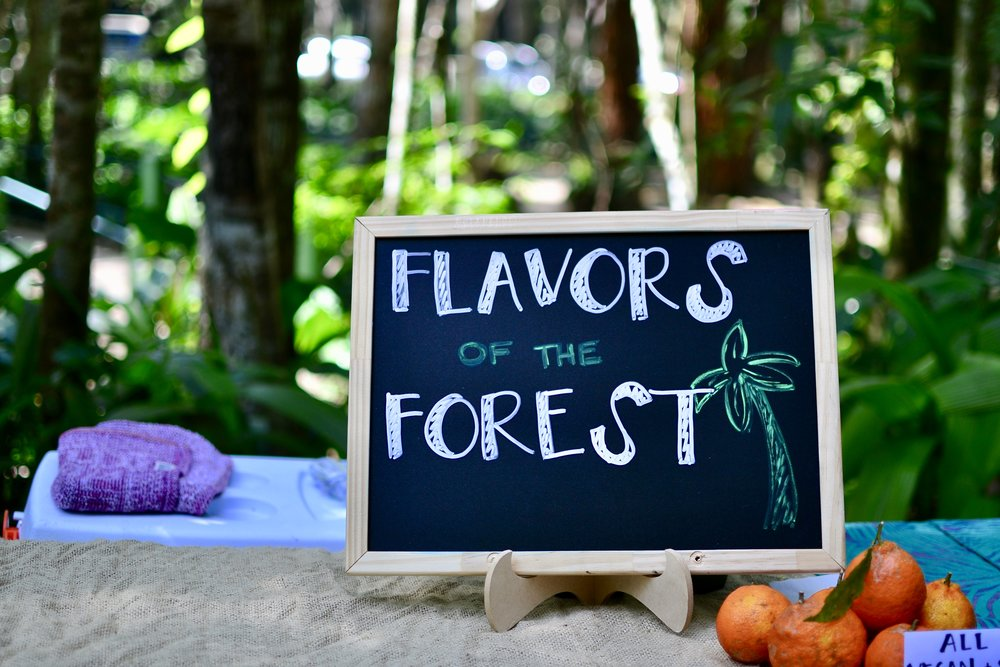 flavors of the forest in Rio