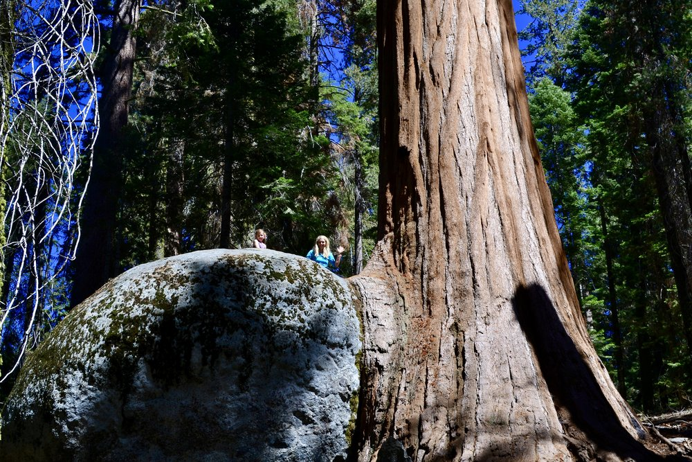 Giant Boulder Sequoia National Park