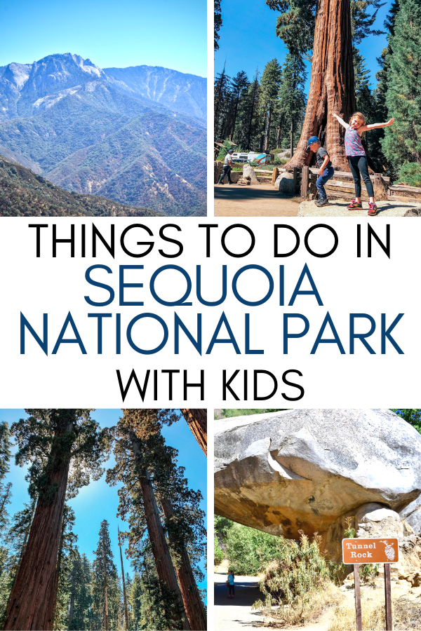 What to Do in Sequoia National Park in One Day with Kids.png