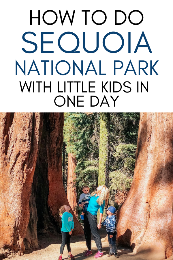 How to do Sequoia National Park with little kids in one day-2.png