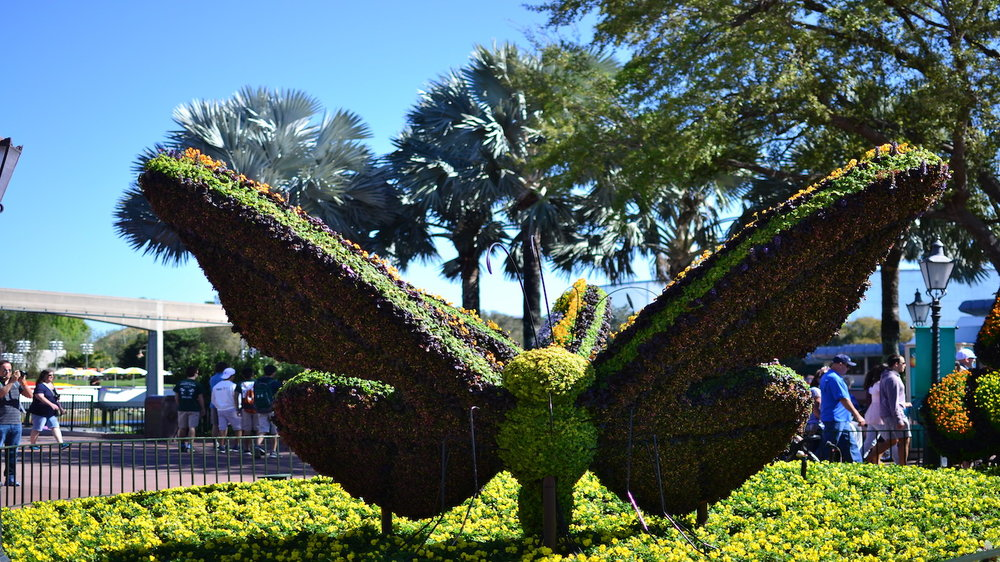 butterfly topiary.jpg