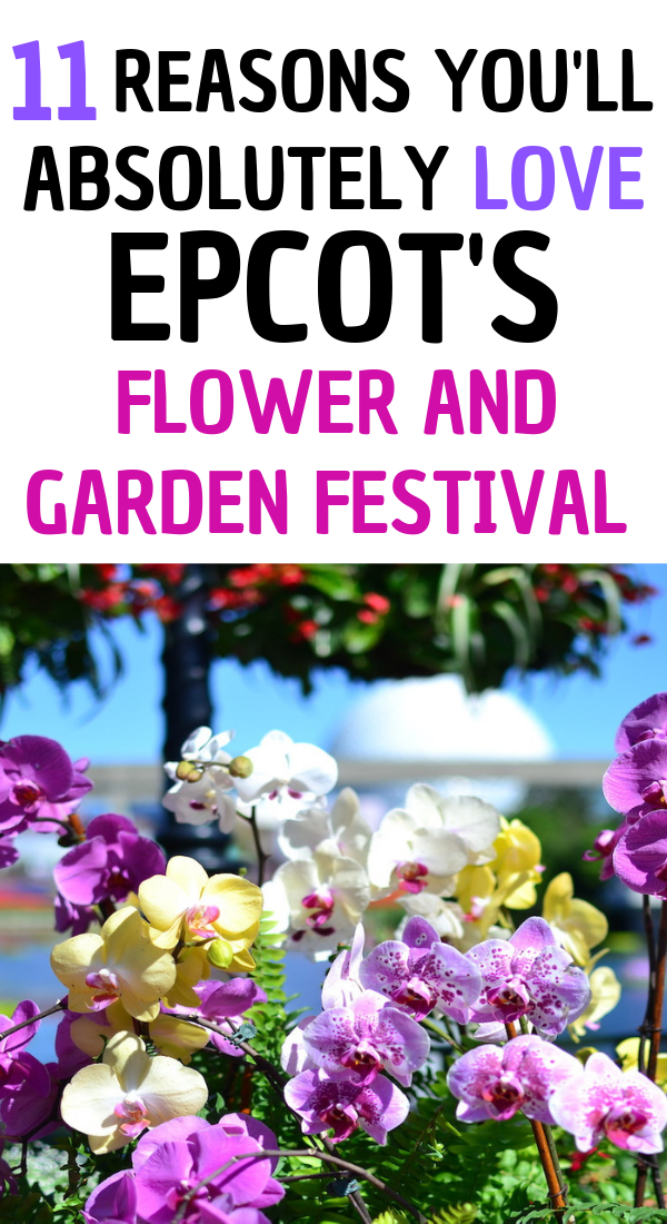 11 Reasons you'll love Epcot's Flower and Garden Festival at Disney World.png