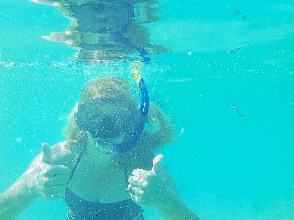 snorkeling in the Dry Tortugas